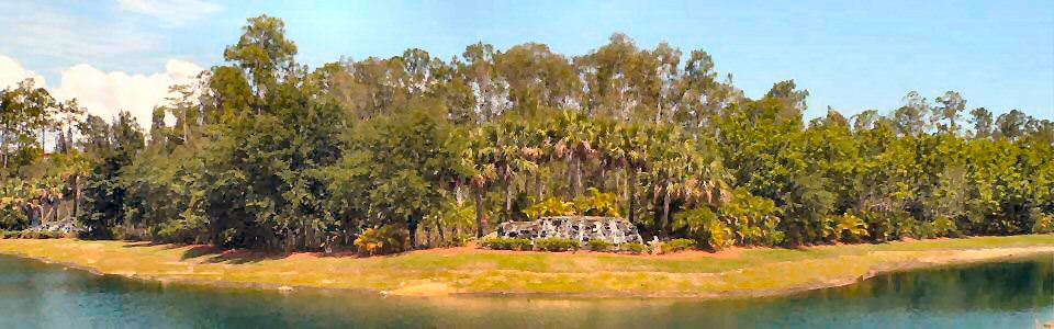 All Villas have a great lake view with preserve. Most valuable and precious area of FALLING WATERS.